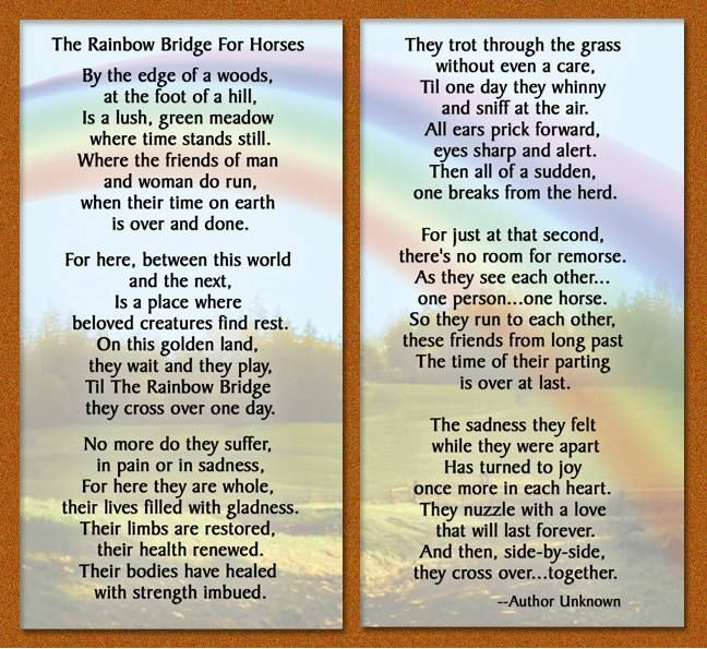 The Rainbow Bridge For Horses - I'll see you on the other side, Rio & Baby.