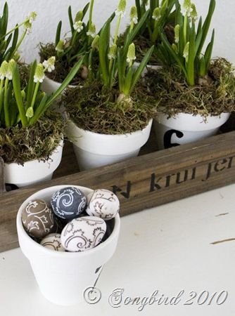 Simple, easy and fun Easter and Spring decoration.