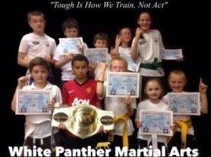 Martials Arts Training in Tralee Awards