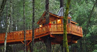 Vertical Horizons - Cozy Treehouse Bed & Breakfast, Cave Junction, Oregon