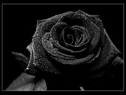 Goran Bregovic & George Dalaras - Σου άξιζε μια καλύτερη αγκαλιά