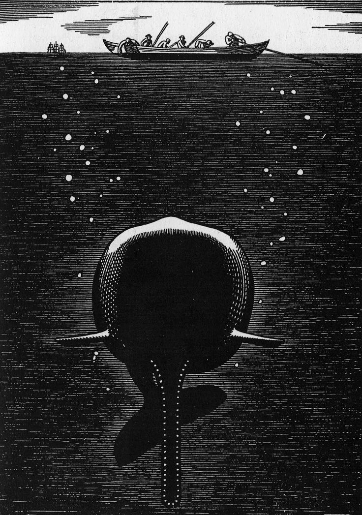 attempts to understand the essential nature of the whale. Each of these systems of knowledge, however, including art, taxonomy, and phrenology, fails to give an adequate account.  rockwell kent: moby dick
