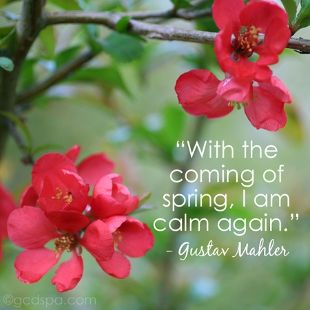 short inspirational quotes Every Day Like Spring 9