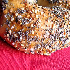 The Best Bagel in New York City - Absolute Bagels (2788 Broadway, New York NY 10025