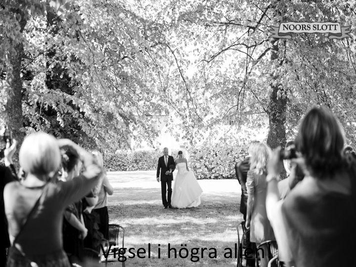 vigsel, allé, bröllop, klänningar, bröllopsklänningar, lycka, slott, vigselplats