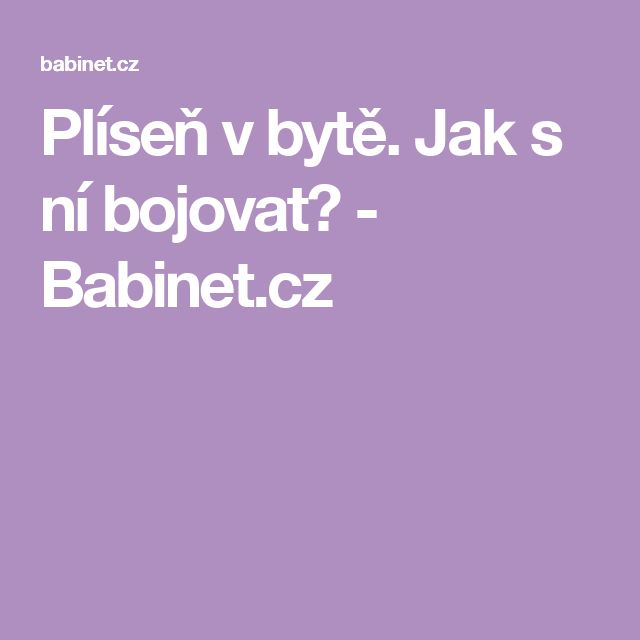Plíseň v bytě. Jak s ní bojovat? - Babinet.cz