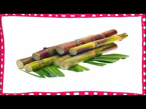MusculacionYMas https://www.youtube.com/watch?v=yW5_p9iUiEk para que es bueno la caña de azucar - beneficios del jugo de caña de azucar para la salud. beneficios de la caña de azucar para la salud. aprende las propiedades de la cañana azucar como también los beneficios de la caña de azucar para la salud. beneficios y propiedades de la caña de azucar para la salud. para que sirve el jugo de caña de azucar. una de las grandes ventajas de la caña de azúcar fresca es que puede ser almacenada en…