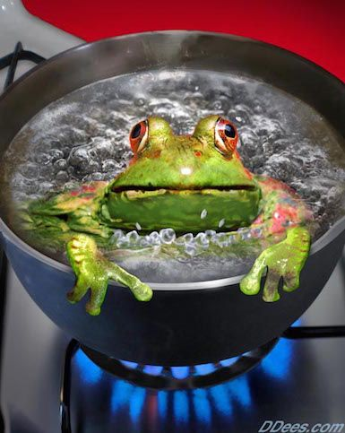 Sleepwalkers, Boiling Frogs and the Activated Awake
