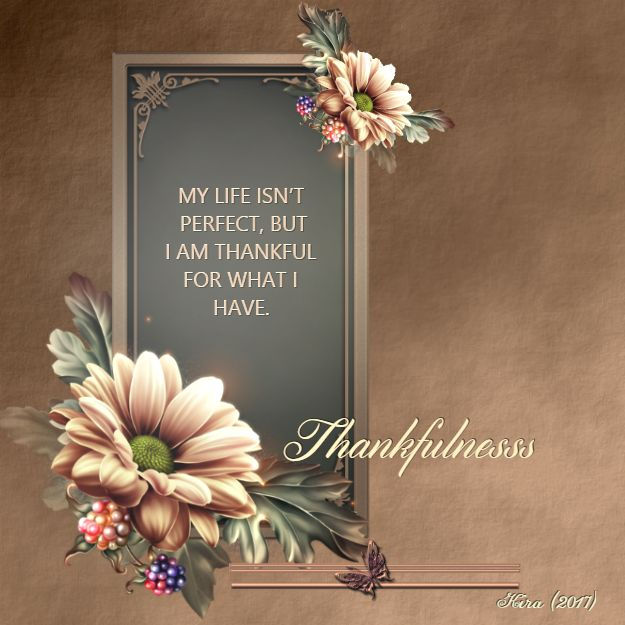 MY LIFE ISN'T PERFECT, BUT I AM THANKFUL FOR WHAT I HAVE.  Words Wisdom & Pictures  https://www.facebook.com/WordsWisdomandPictures