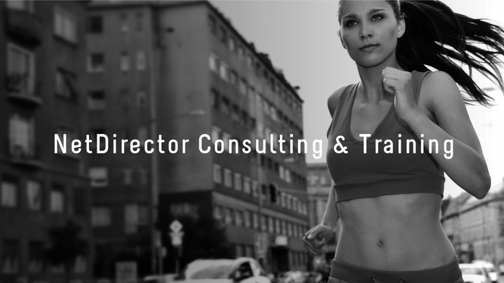 NetDirector Consulting & Training