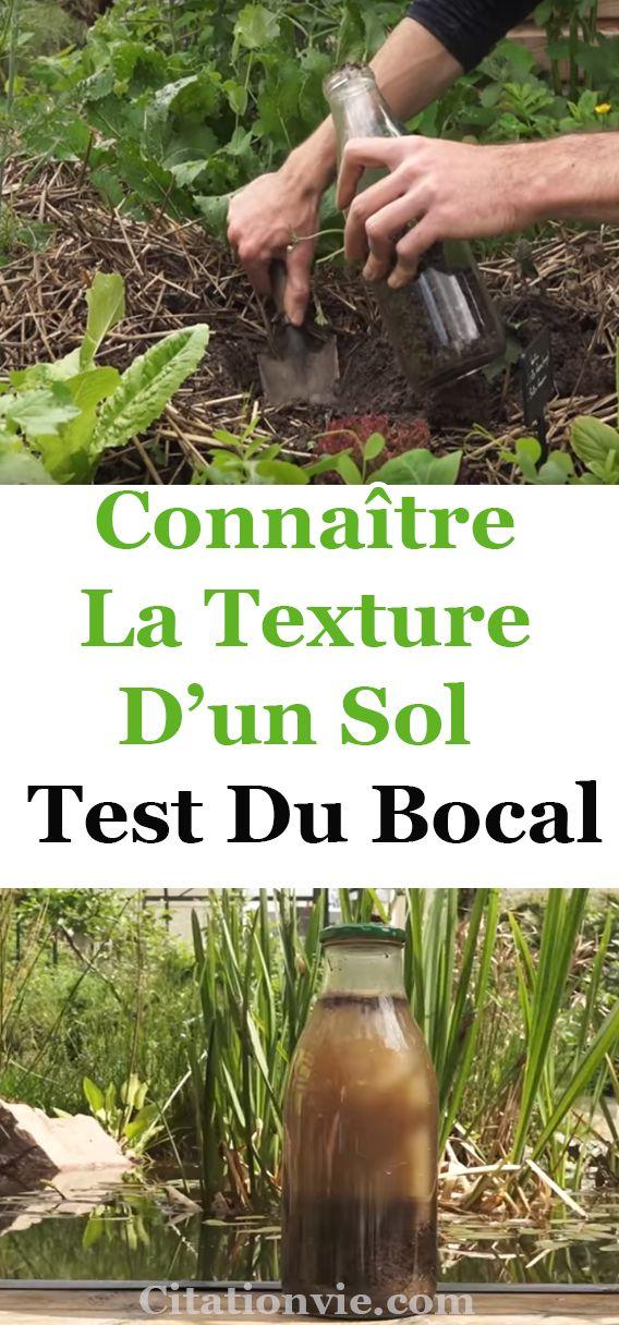 Connaître la texture d'un sol : test du bocal