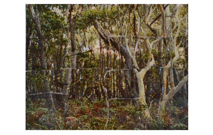 Makers Lane :: National Park   Mini Artwork Custom Made, Bespoke artwork made in Australia.