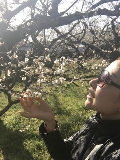 八女市の梅の名所へ立花町谷川へ行ってきました(((o(゚゚)o))) 広大な大自然に咲き誇る沢山の梅の木は深い感動を味わせていただけます  だだいま 見ごろ時期のおまつりとして 2月26日(日)まで 梅たちばな観梅会が催されてます http://ift.tt/2lwVrgZ tags[福岡県]