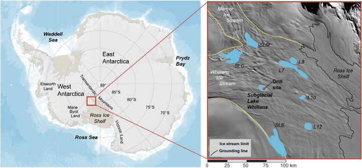 High geothermal heat flux measured below the West Antarctic Ice Sheet | Science Advances