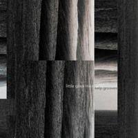 Kelp Grooves by Little Glass Men on SoundCloud