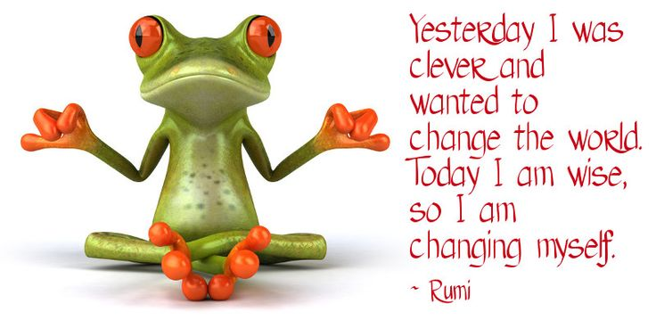 Yesterday I was clever and wanted to change the world. Today I am wise, so I am changing myself. ~ Rumi #zen