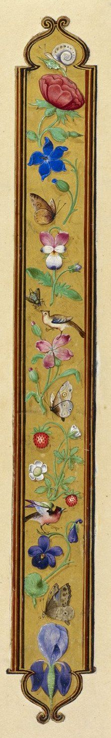 Floral border, cutting from a Gospel Lectionary of Gregory XIII; Italy, Central (Rome); c. 1572 - c. 1585. London, British Library, Additional 35254K