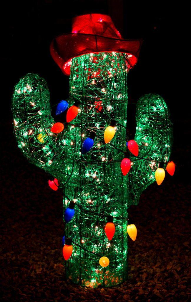 202 Best Arizona Images On Pinterest Merry Christmas Tucson