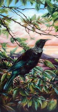 Tui Birds Singing ~ New Zealand