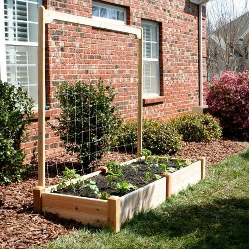 Best 25+ Cedar Raised Garden Beds Ideas On Pinterest