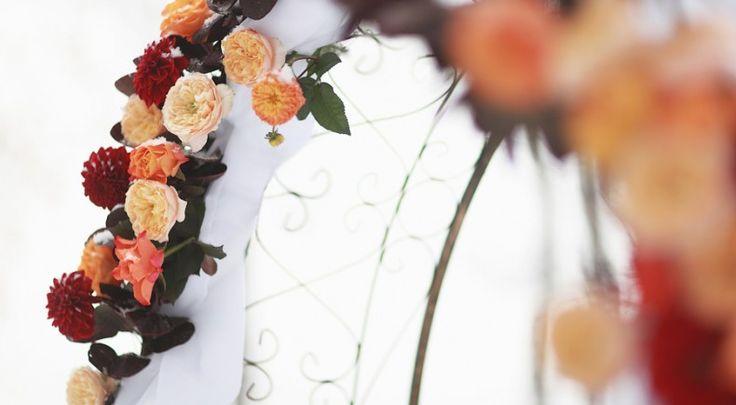 Свадебная арка из розы Вувузелла, георгинов и красных пионовидных роз