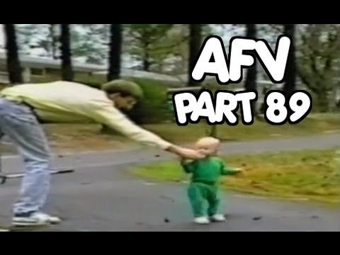 Best 25  Funny home videos ideas on Pinterest | Crazy cat gif, All ...