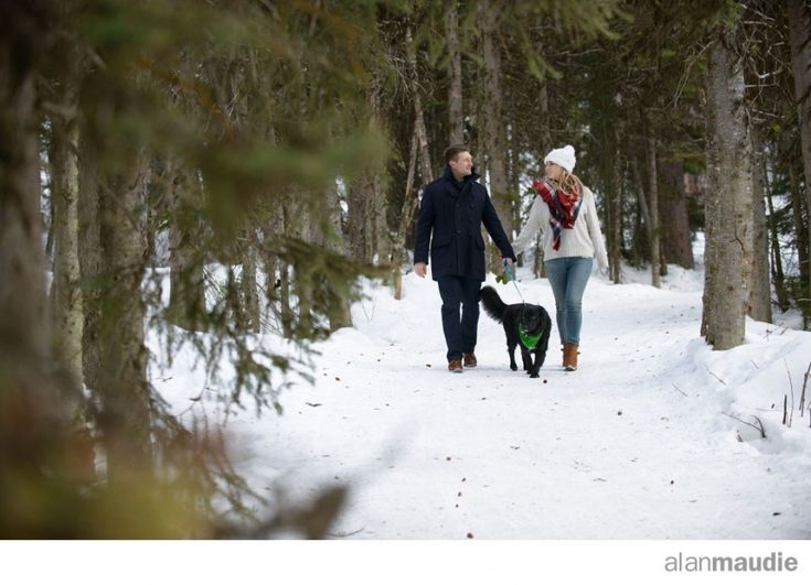 Engagement session in winter with dog, Canadian Rockies Wedding Photographers, Lake Louise Wedding Photographer