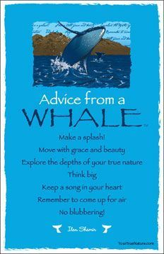 Advice from a WHALE ╰☆╮skymomma╰☆╮