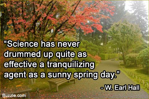 Funny and Cute Spring Quotes That Will Make You Smile All Day Nothing beats clear sunshine...   <a href=