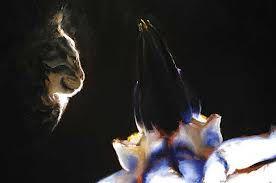 louise hearman artworks cat