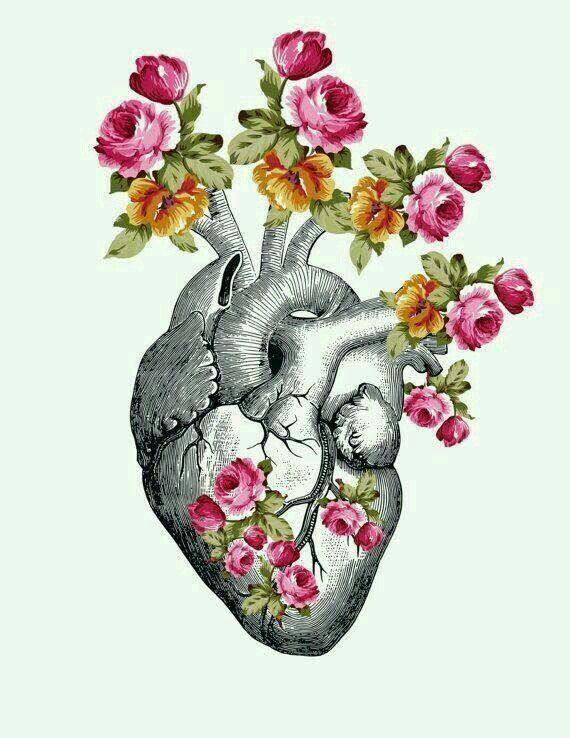 قلب مزروع بالامل In 2019 Heart Art Anatomy Art
