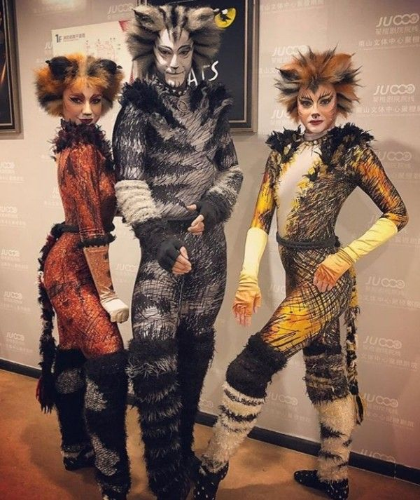 Pin By Lena Graf On Cats Cats The Musical Costume Jellicle Cats Cats Musical