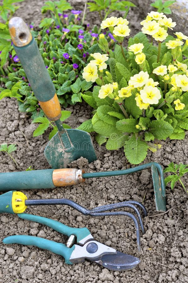 Gardening Tools On Soil And Flower In Background Spon Tools