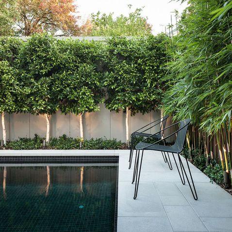 MALVERN HOUSE Melbourne Australia - contemporary - spaces - melbourne - DDB Design Development & Building