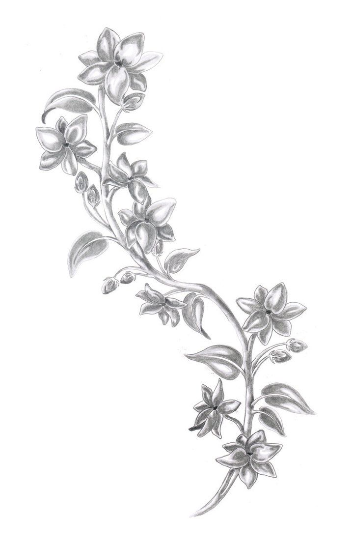 sampaguita - if I decided to get another tatoo...it would be this