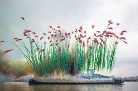 Image result for chinese fireworks artist