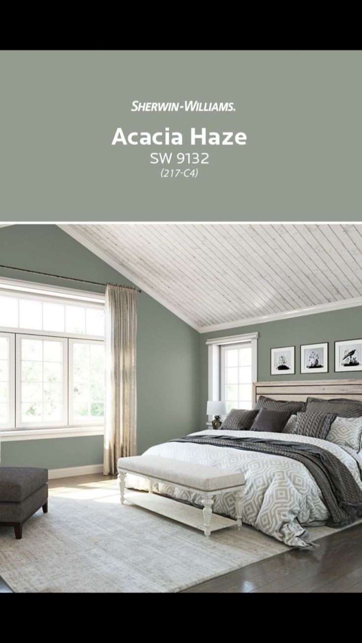 Acacia Haze Sherwin Williams Paint Colors For Living