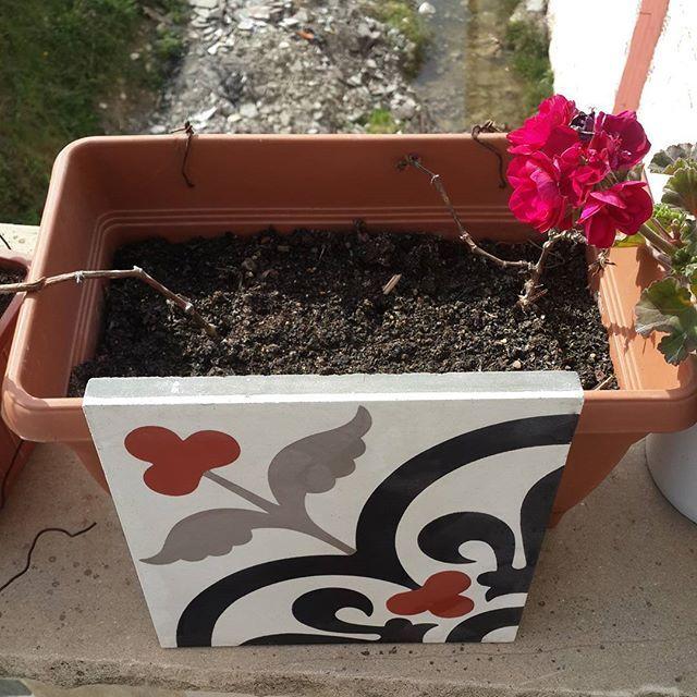 #karoantoloji doganın #renklerini #zemin lere tasıyor #cementtileshop #cementtiles #tiles #zementfliesen #baldosas #rumkarosu #karosiman #karo #desenlikaro #icmimar #interior #interiordesign #izmitkaro #ankarakaro #bursakaro #izmirkaro #istanbulkaro #bodrum #floor #flowers #red #handmade #homedecor