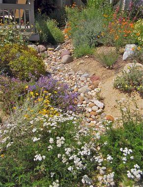 California Native Plant Society   Orange County
