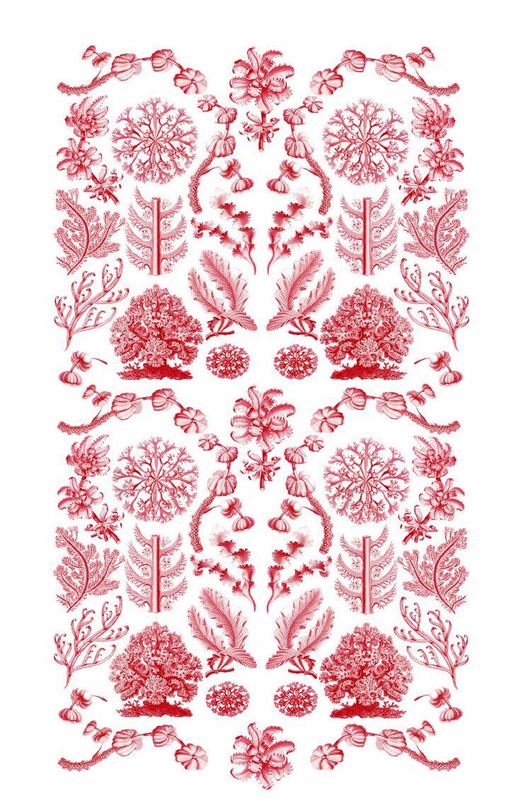 Rullgardin - Röd korall