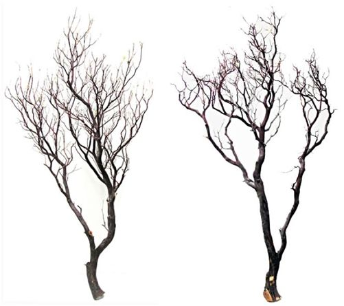 Natural Manzanita Branches, 48 in, case/2 - Blooms and Branches