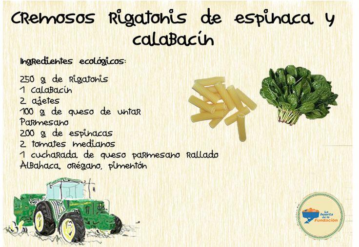 Receta ecológica: rigatoni, espinaca y calabacín