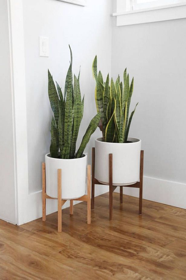 Extra Large Mid Century Modern Planter With Walnut Or Oak Planters