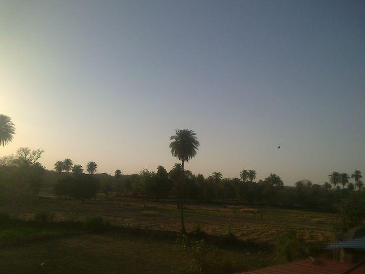 Landscape Rajasthan