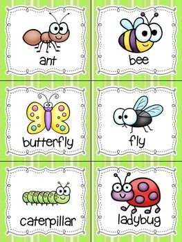 FREE INSECTS! READ, WRITE, AND COUNT THE ROOM {LITERACY AND MATH CENTER} {CCSS} - TeachersPayTeachers.com