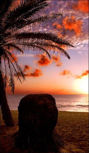 ~~Sunset Beach ~ Haleiwa, Hawaii by xengravity~~