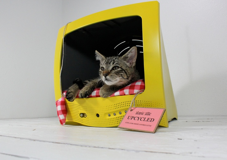 Re-purposing an old TV into a cat bed. If you had one of those round-edged 70's TV-sets, you can pat your kitten to sleep in them with style. This is sold here on Etsy http://www.etsy.com/listing/78570428/upcycled-television-pet-bed . #DIY #pet #yellow #recycle #upcycle: Cat Beds, Computers, Idea, Pet Beds, Cat Houses, Old Tv, Tvs, Upcycled, Kitty