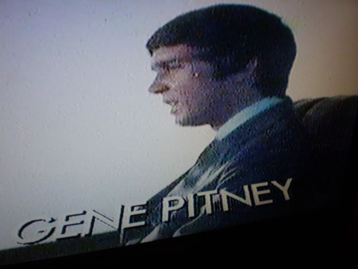 1960's U.S.A Pop Hits DVD.Gene Pitney,Bob Dylan,The Ronettes,The Supremes - The Garden Room
