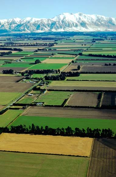Canterbury Plains, to the south of Christchurch in the Canterbury Region, South Island, New Zealand