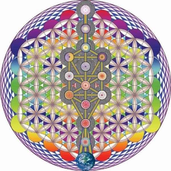 Flor de la Vida - Árbol de la Vida Geometría Sagrada